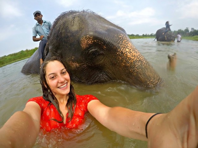Online student and elephant in Nepal study abroad