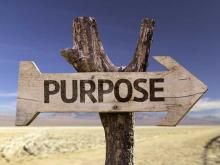 Creating a Solid Statement of Purpose